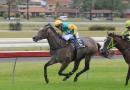 gallery-horse-racing-05