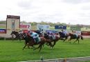 gallery-horse-racing-07