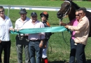 gallery-horse-racing-08