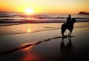 gallery-horse-racing-09