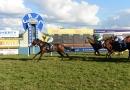 gallery-horse-racing-31