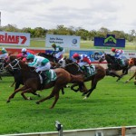 Tuncurry's Next Race Meeting 13th September